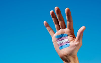 Anti-Transgender Violence Warning Signs & Prevention Tips